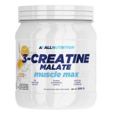 AllNutrition 3-Creatine malate, 500 грамм