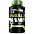BioTech Tribulus Maximus, 90 таблеток