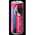 Power Pro Poland Carnitine Energy Drink, 250 мл