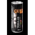 Power Pro Poland CUBE Tribulus Energy Drink, 250 мл